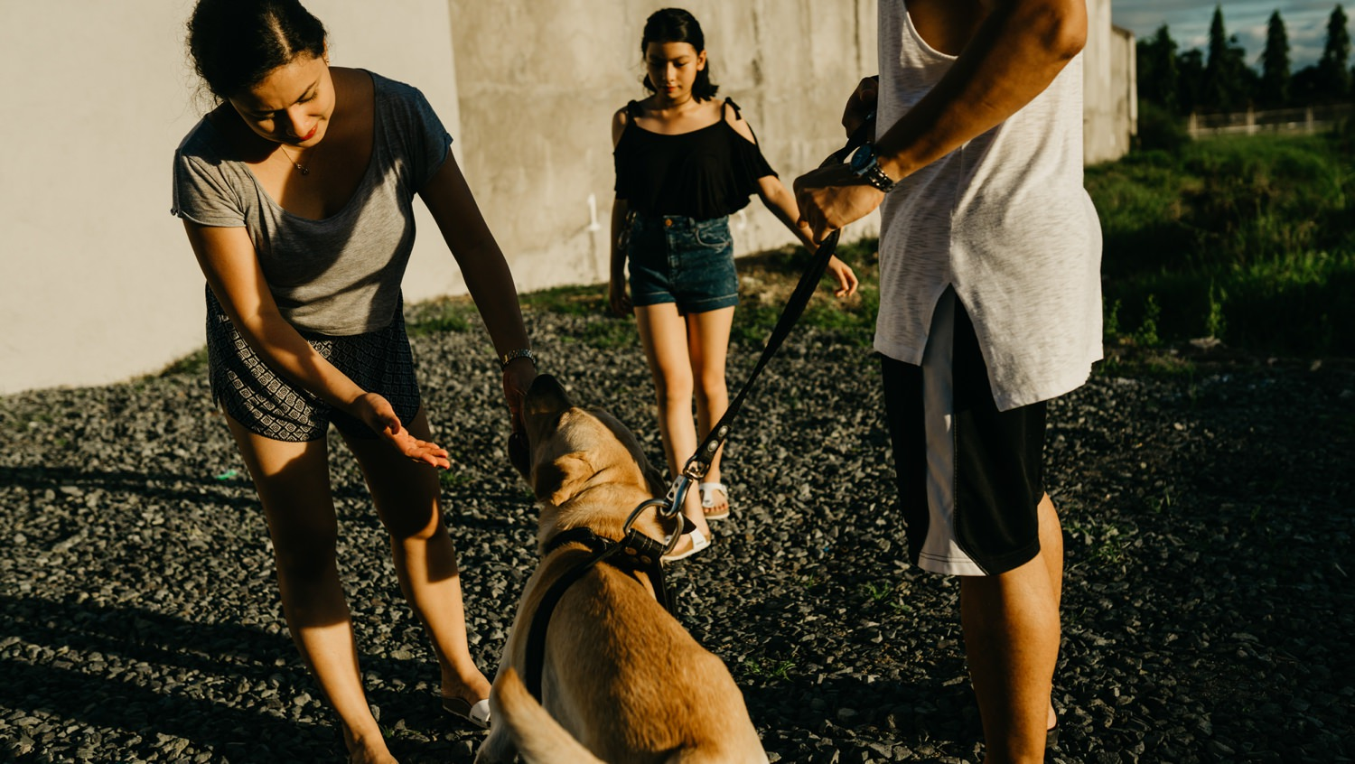 stories by mina - A day in the life - Elyra, Sophie, Pyros, 7 cats, and chief the dog - family photographer - philippines